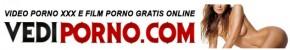 logo vediporno.com